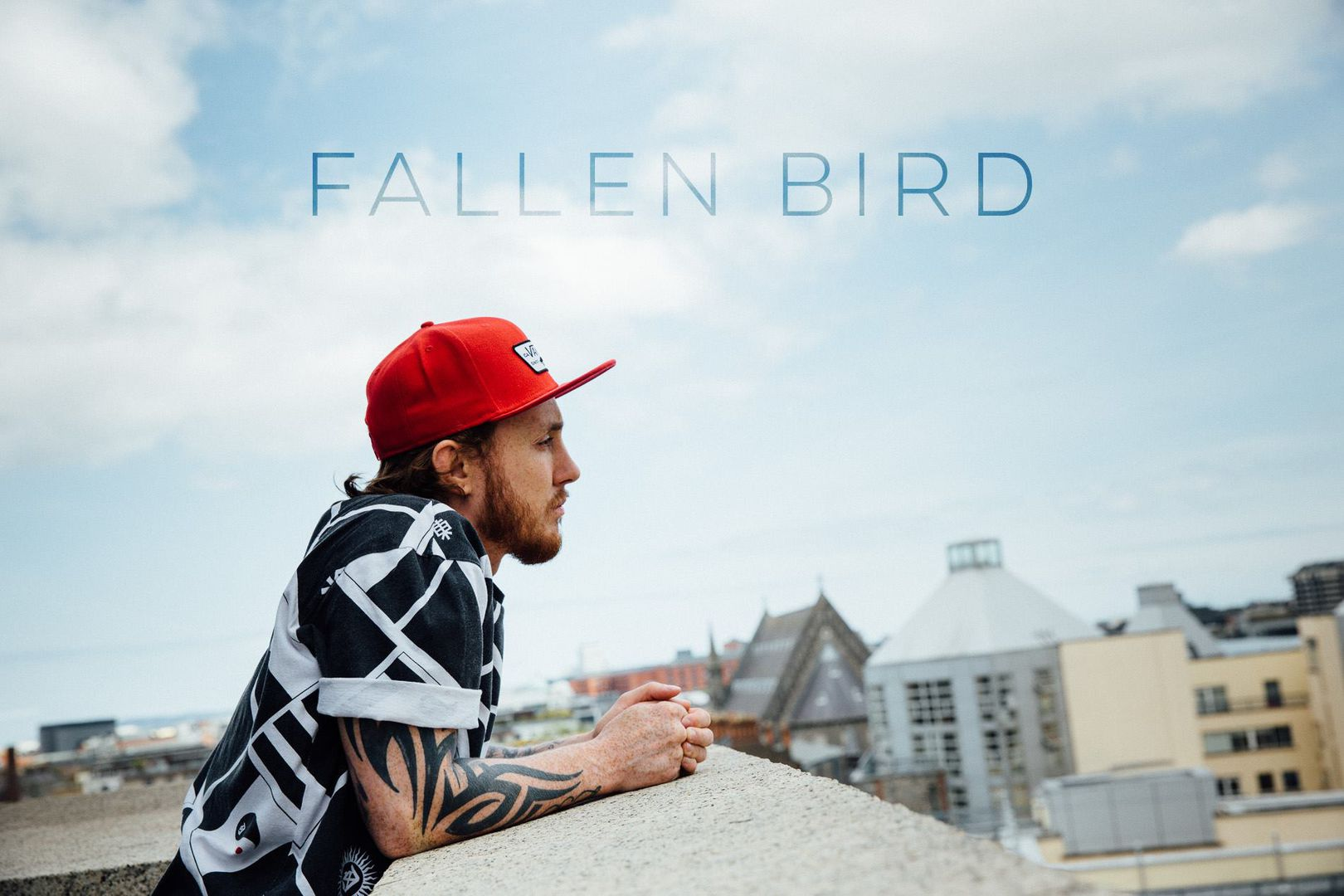 Poster from short documentary, 'Fallen Bird'. Photo Credit Nathan Fagan