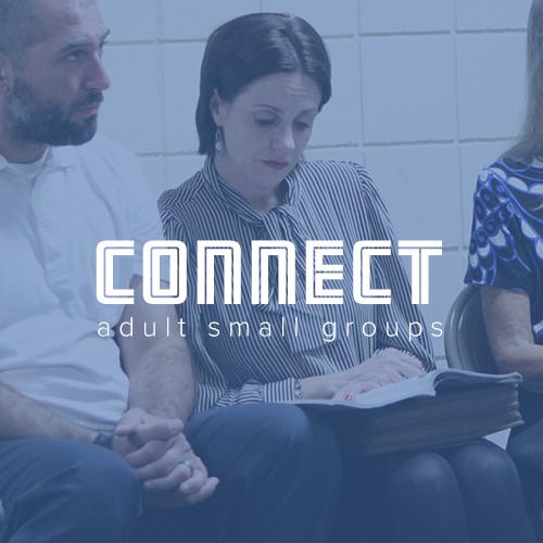 hp adult sm groups box.jpg