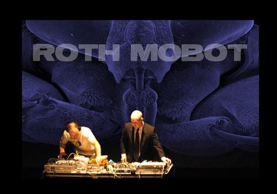 Roth+Mobot+copy.jpg