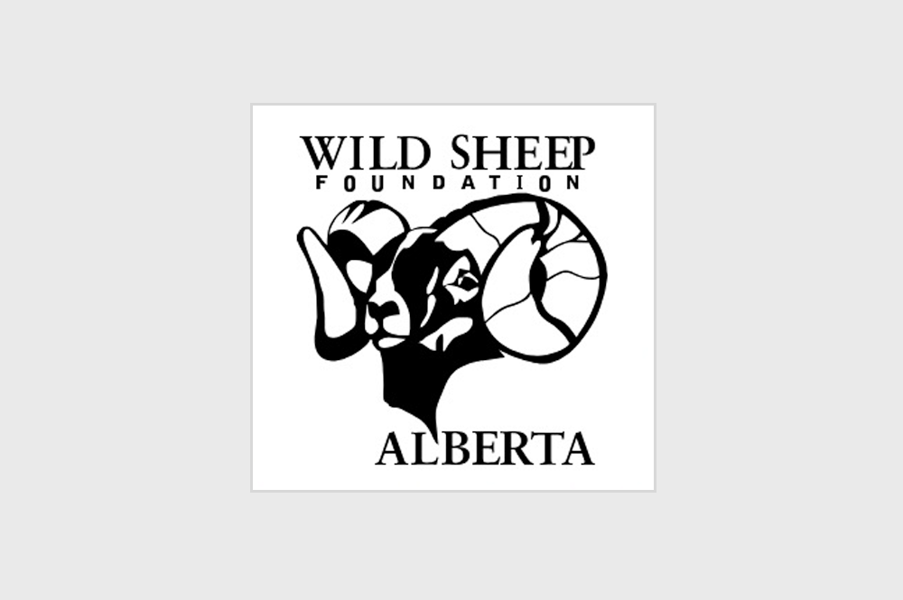 Wild Sheep Foundation of Alberta   Together we can Ensure the Future of Wildlife