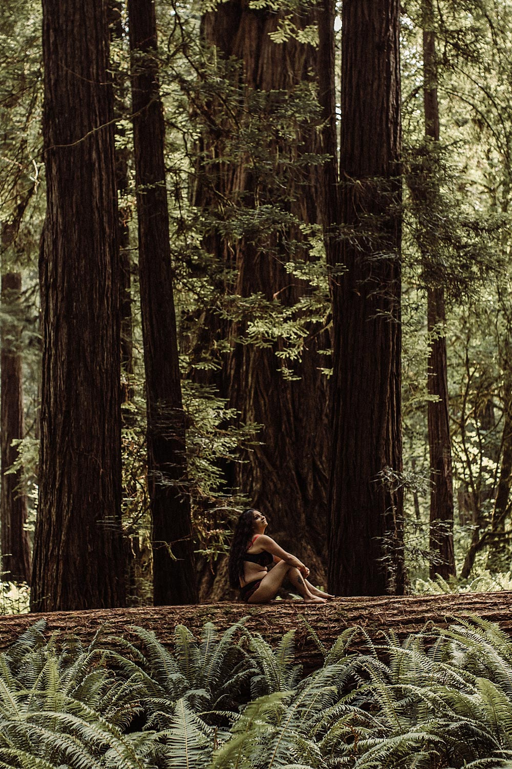 woman-sits-on-fallen-tree-at-Patricks-Point-State-Park.jpg