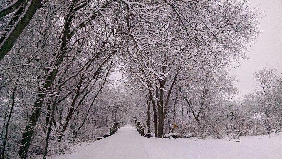 awi-outside-trail-snow-b.jpg