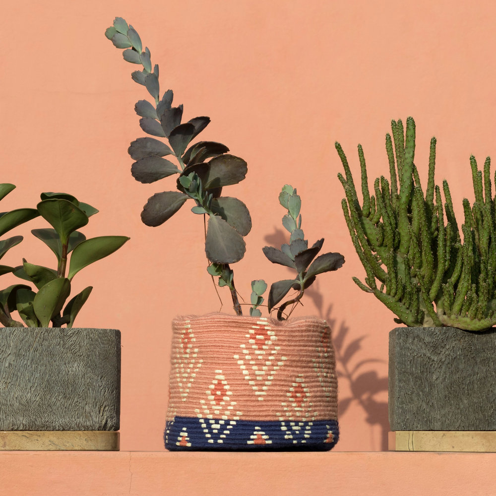 DARProjects-CoralWall-Planters_2.jpg