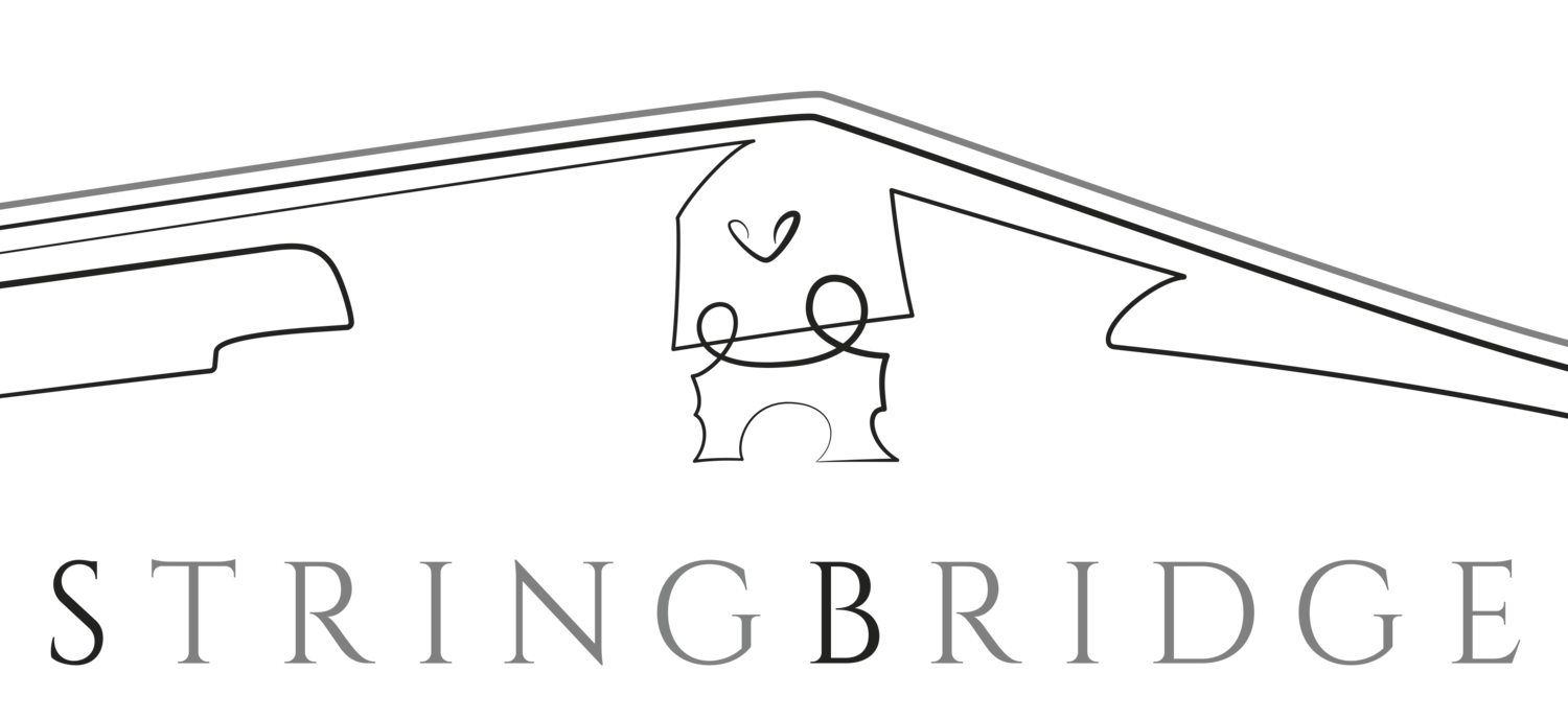 StringBridge