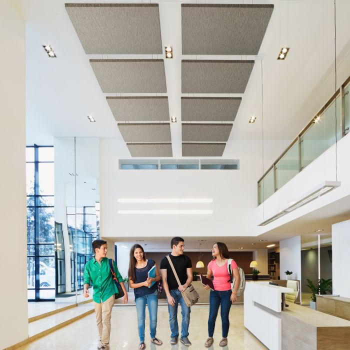 Acoustic Ceiling Clouds