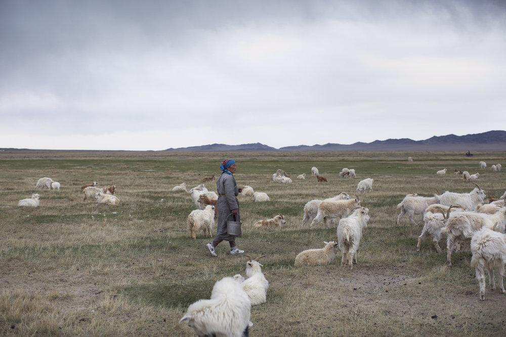 MAIYET-MONGOLIA-KD-DAY4-4-2250v1.jpg