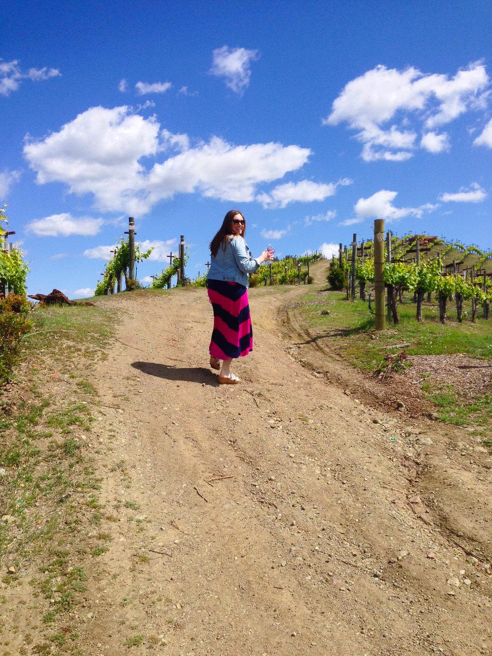 Malibu Wine Safari - Malibu Wines Vineyard