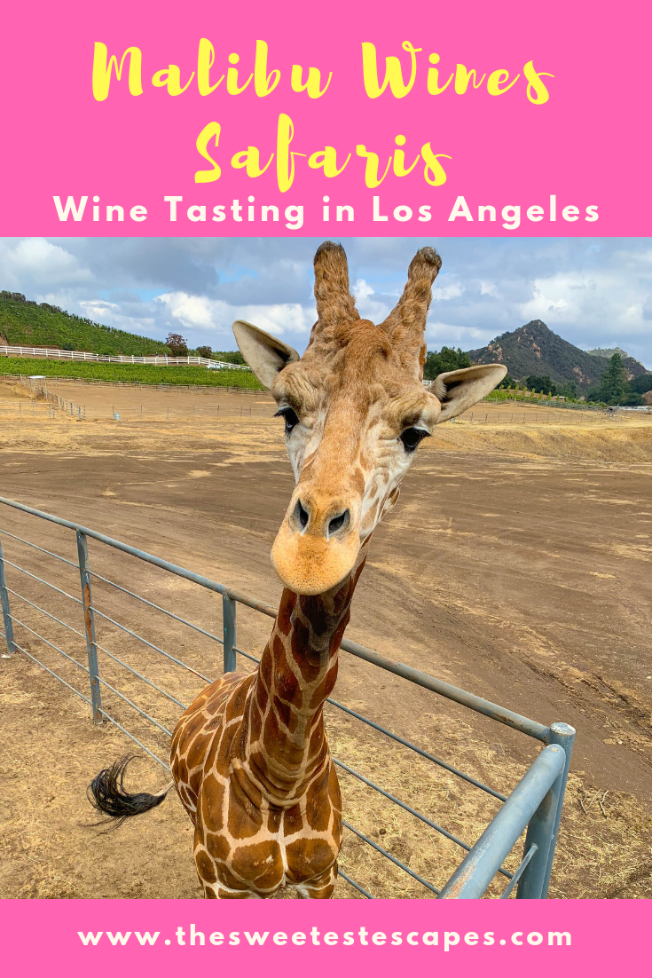 Malibu Wine Safaris - Wine Tasting in Los Angeles
