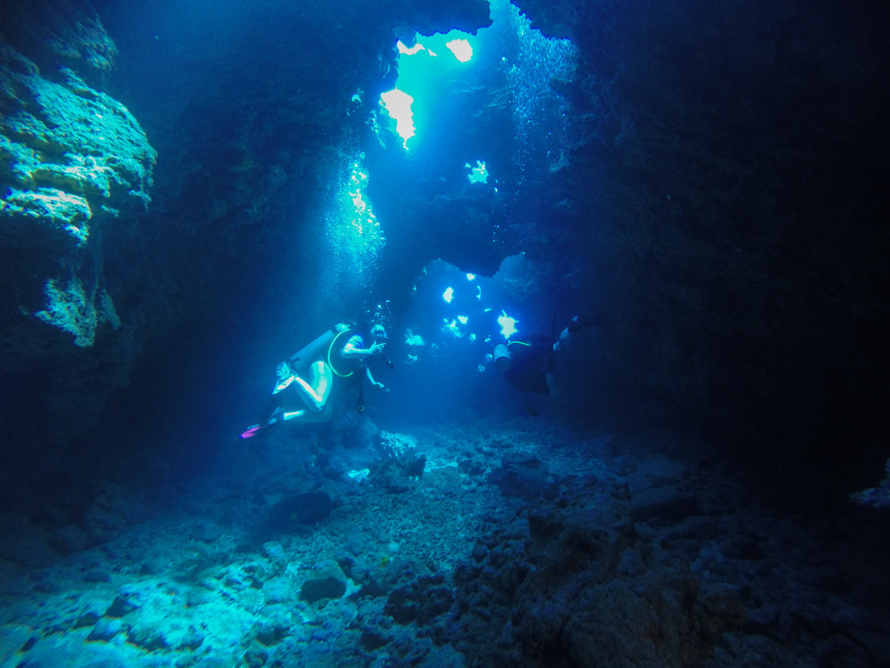 Maui Scuba Diving - Cathedral II - Lahaina - Extended Horizons