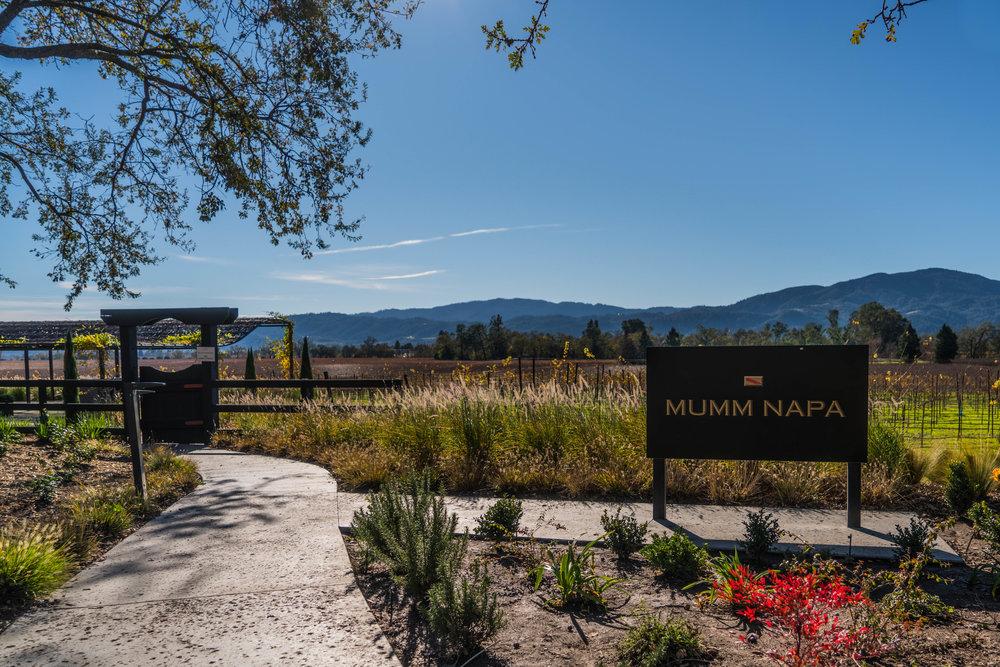 Mumm Napa Winery and Vineyard - Wine Tasting