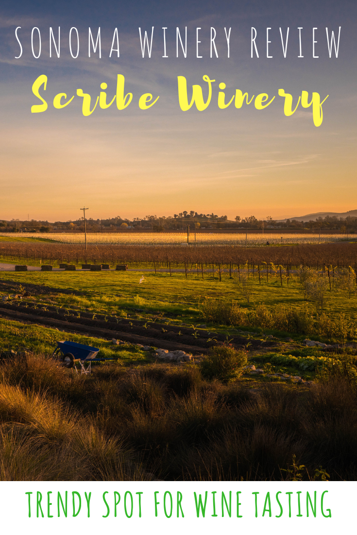 Sonoma Winery Review - Scribe Winery