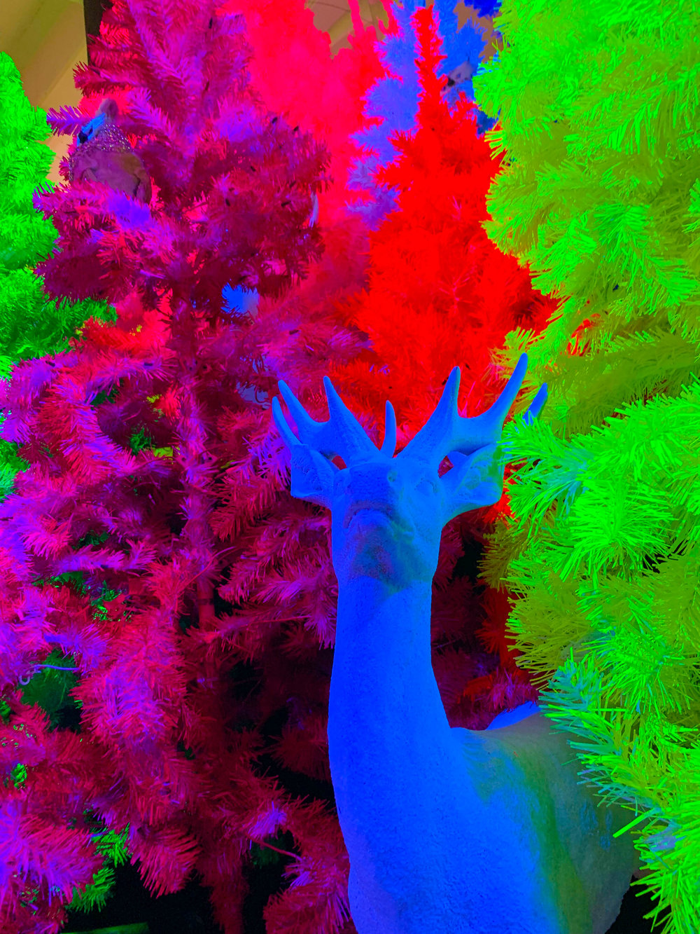 Fa la land - Christmas Pop-up in Downtown LA Naughty or Nice Room - Bright colored Christmas Trees