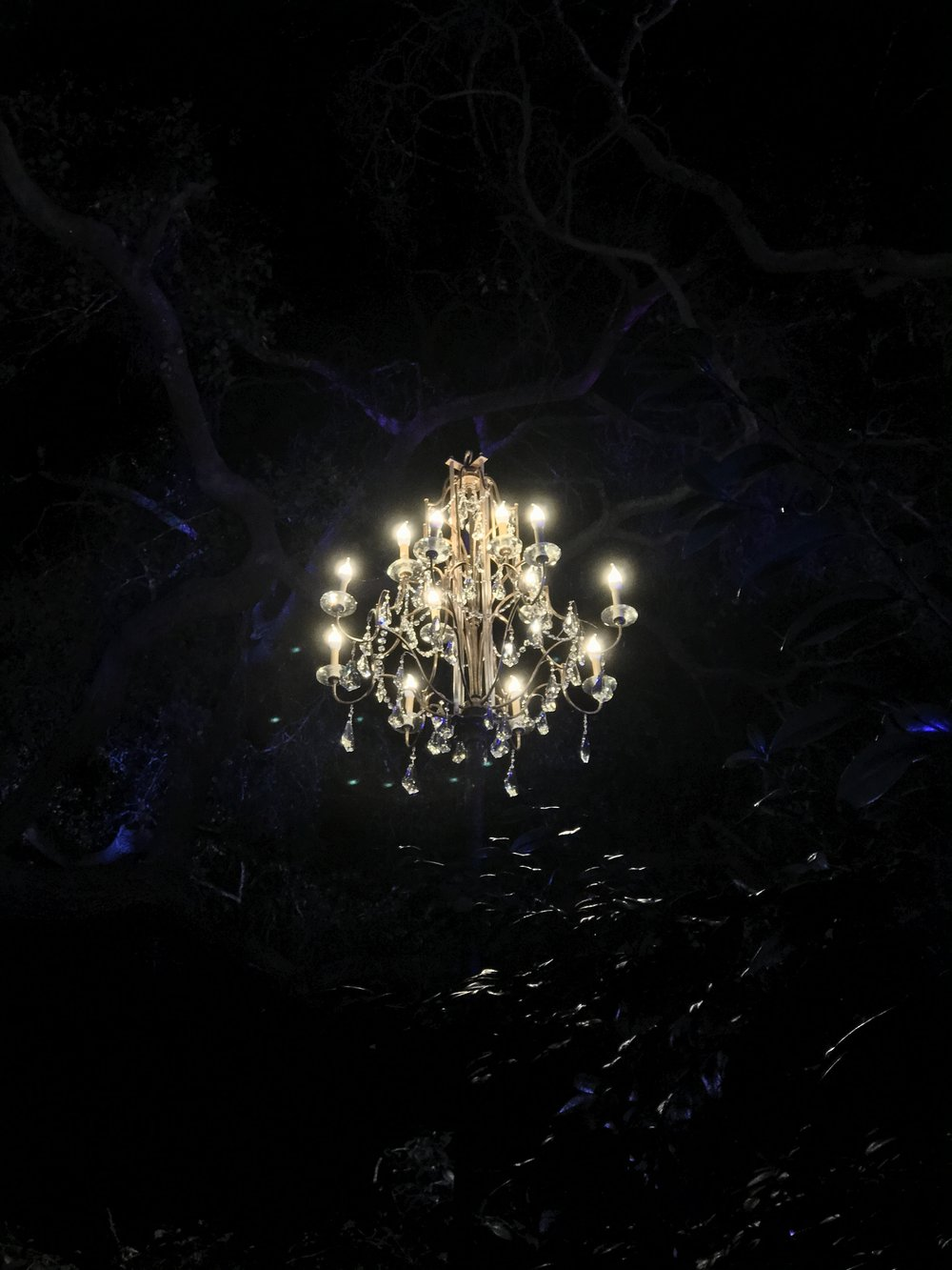 Descanso Gardens Forest of Light - Christmas in LA Chandelier