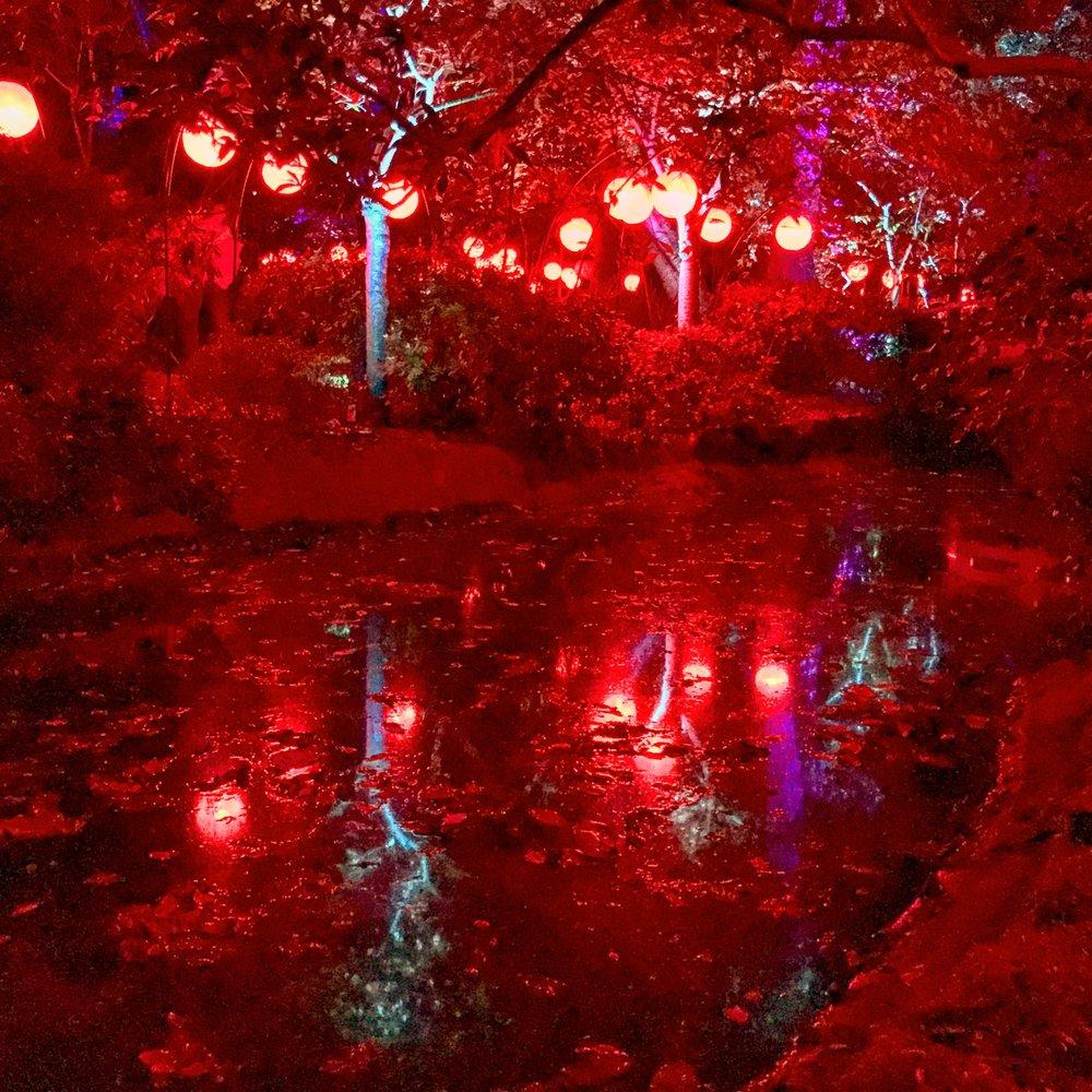 Descanso Gardens: Enchanted Forest of Light Japanese Garden Lanterns