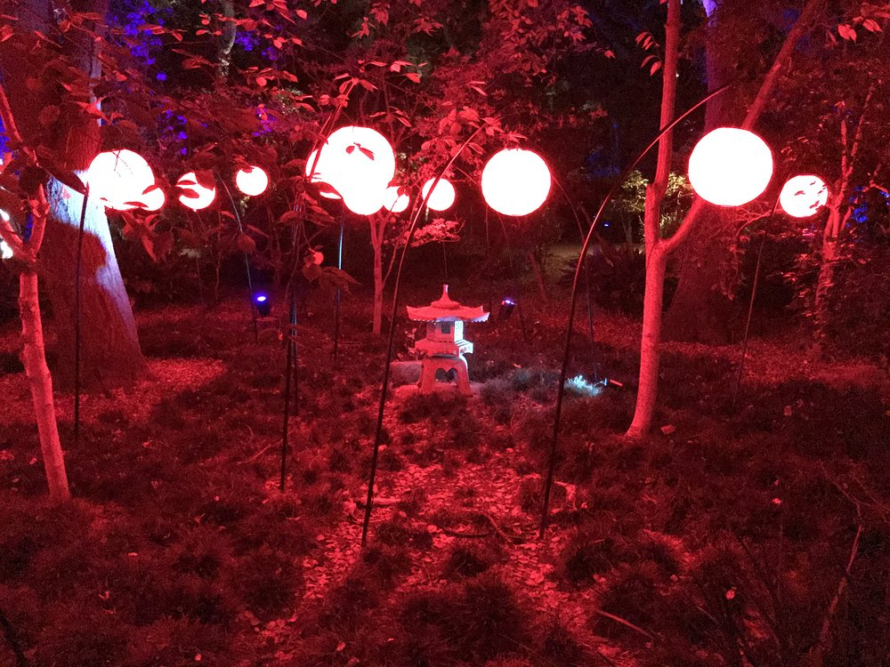 Christmas in Los Angeles - Descanso Gardens: Enchanted Forest of Light
