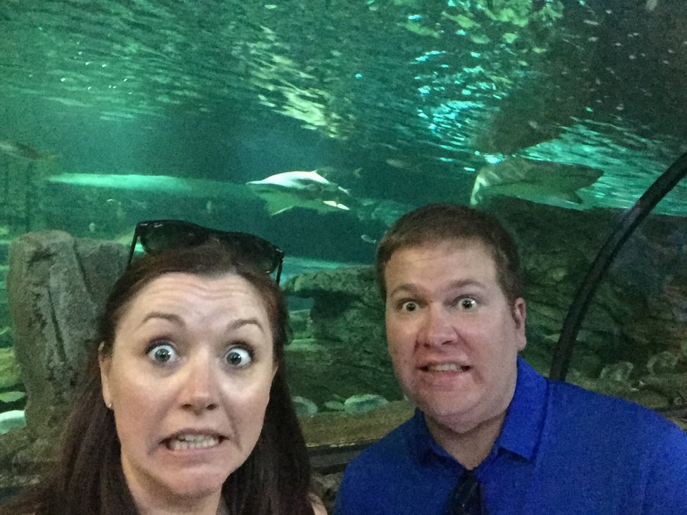 Sea Life Sydney Aquarium - Sharks