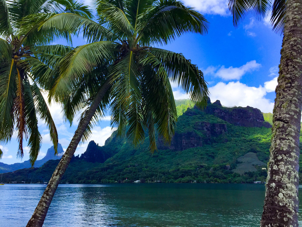 Moorea Island Views
