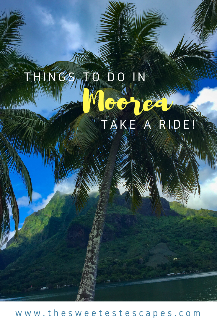 Rent a Buggy in-Moorea-French Polynesia .png