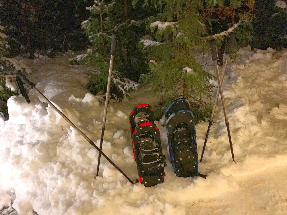 Norway Snowshoes.jpg
