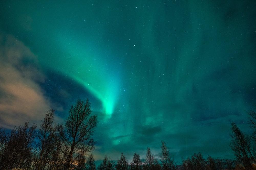 Norway_Dancing_Northern_Lights.jpg