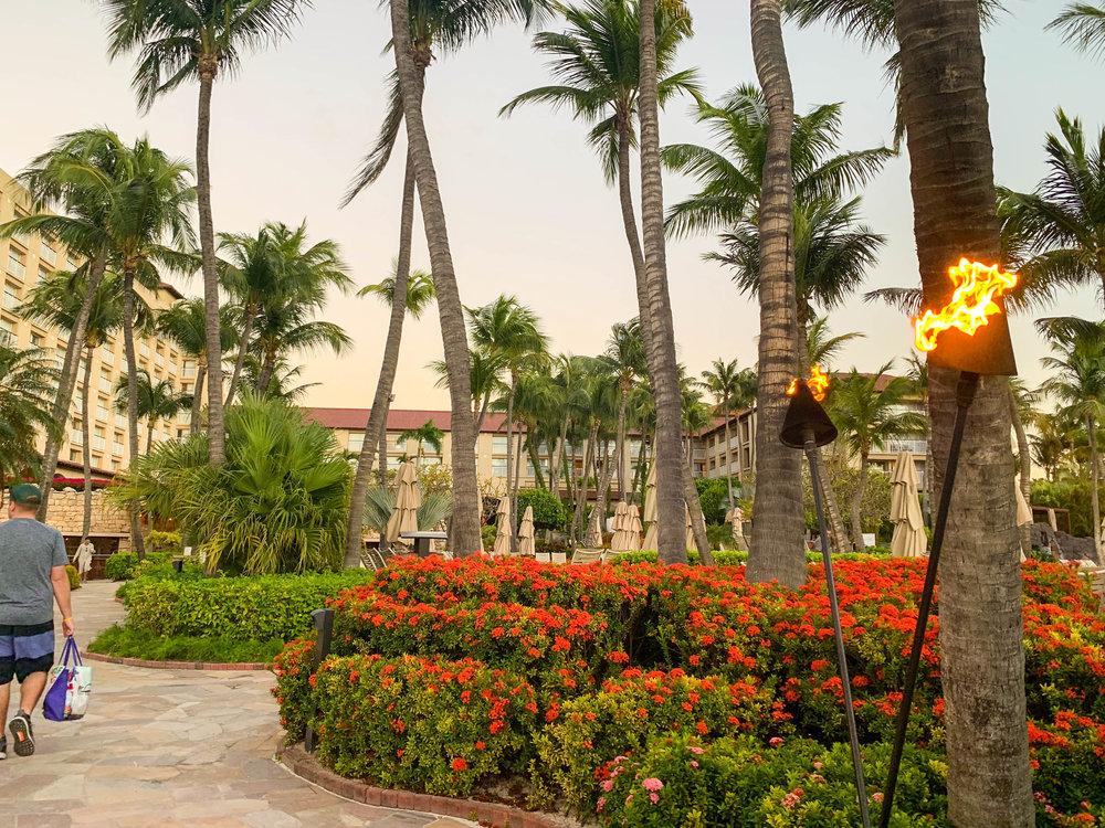 Aruba-Hyatt-Regency-31.jpg