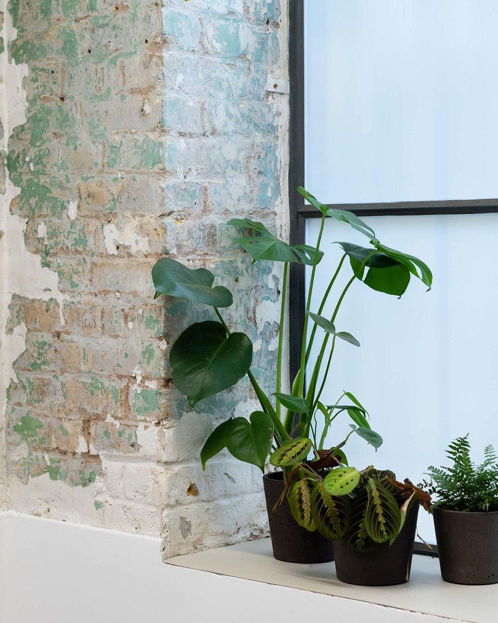 Architecture-London-Design-Freehaus-Workspace-Ink-Works-11.jpg