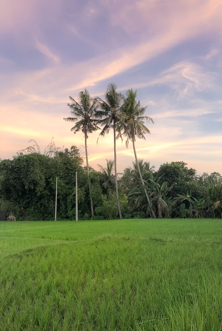 Bali 27-02-2018 Sunset 3.jpg