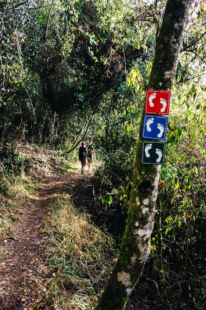 Groenewield Hike-2.jpg