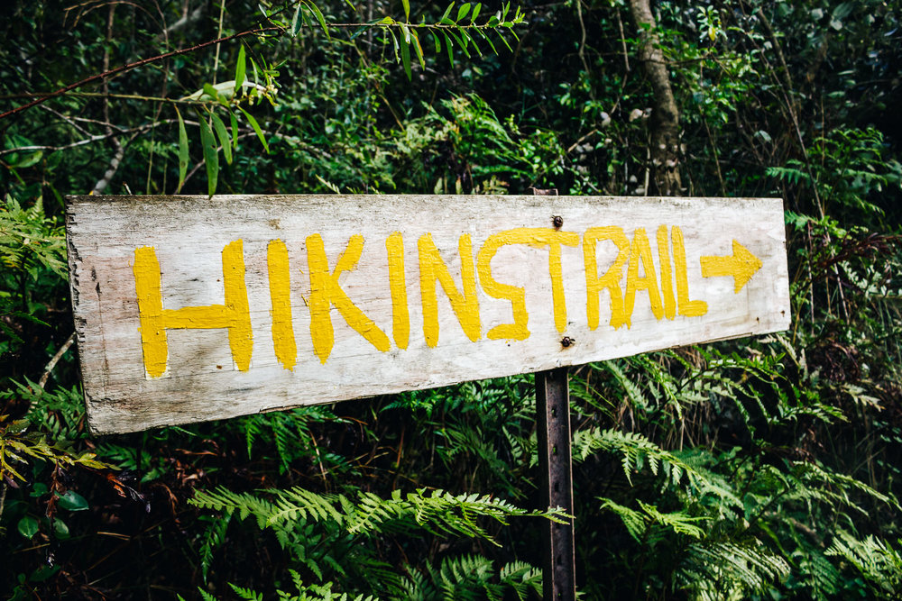 Groenewield Hike-10.jpg