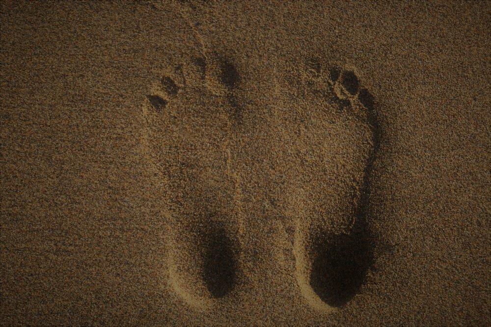foot reflexology image.jpg