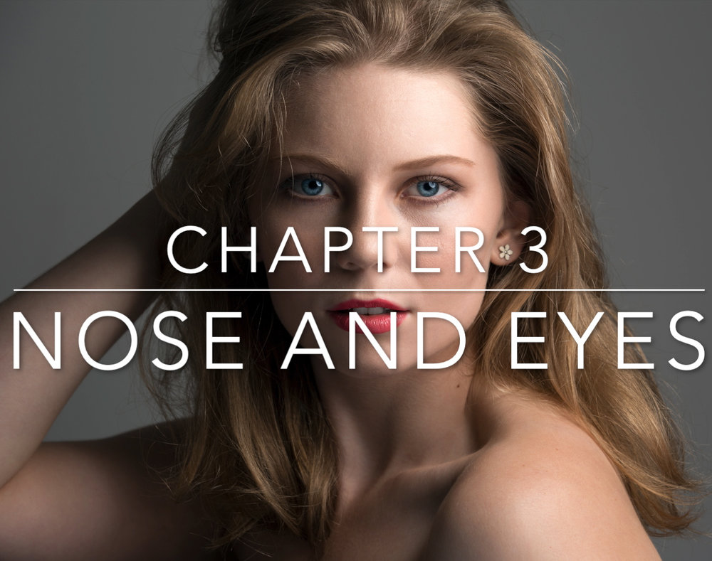 Chapter 3 - Nose and Eyes