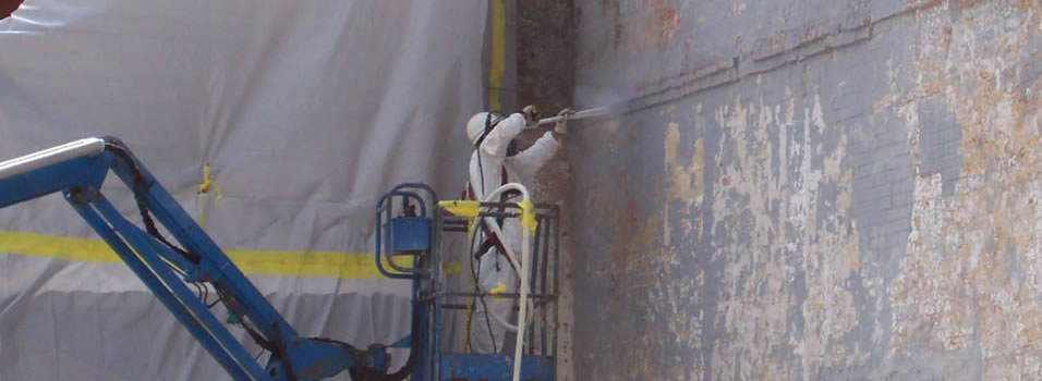 Construction related services such as selective demolition and spray applied fire proofing.