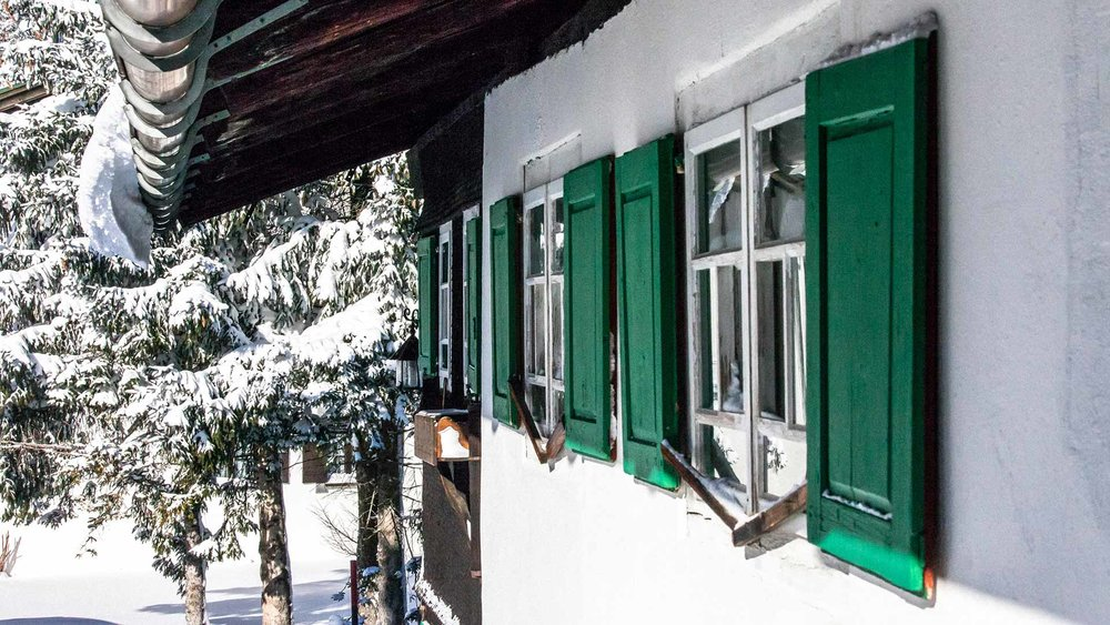 windows-(1-of-1).jpg