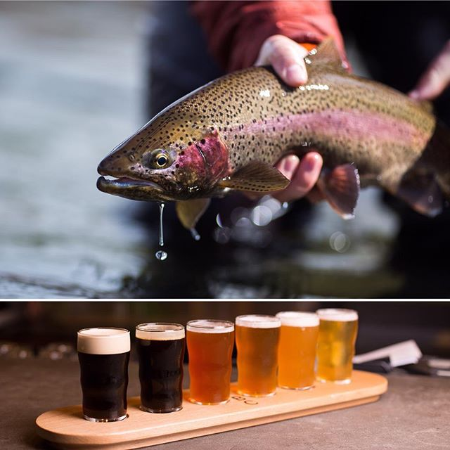 April is NC Beer month and @abs_flyfishing is offering a sweet combo of fly fishing and craft beers to celebrate! Visit their page for details. • • • #adventuresproposed #ncbeermonth #westernnorthcarolina #flyfishing #adventure