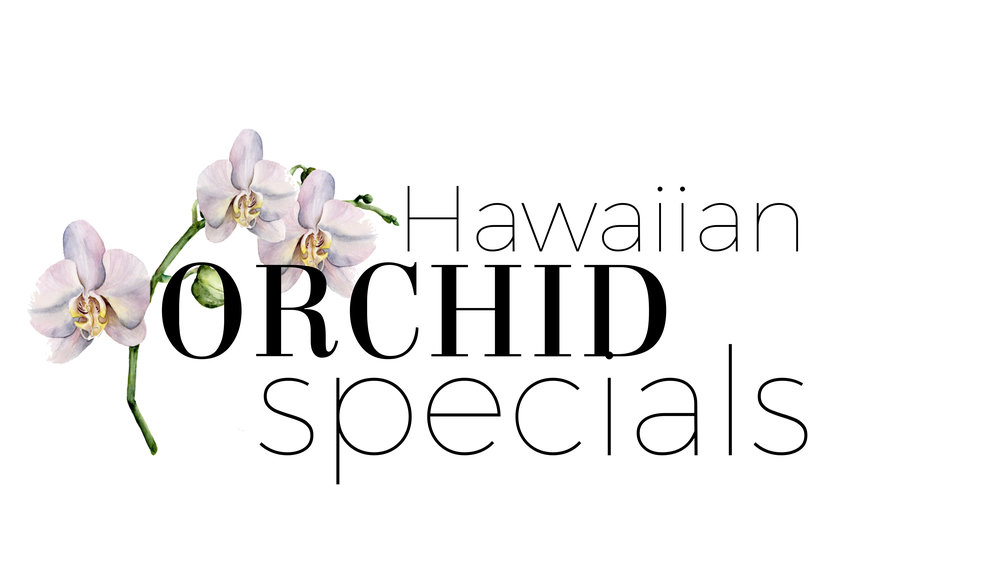 Hawaiianorchidspecials.JPG