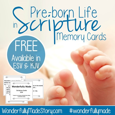 Scripture Memory Cards About Babies