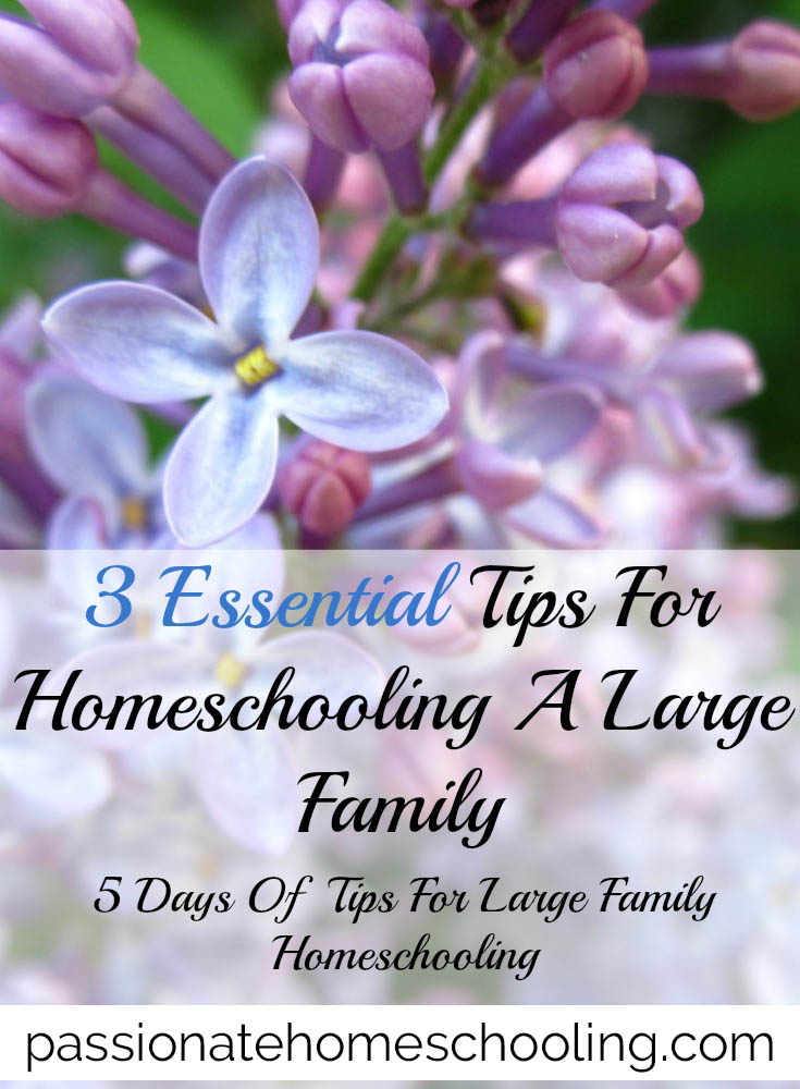 3 Essential tips for homeschooling a large family.