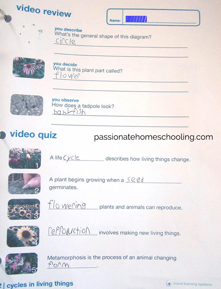 Science Review Worksheet