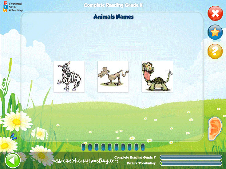 Animal Name Game Kindergarten