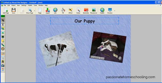 Making Websites For Kids