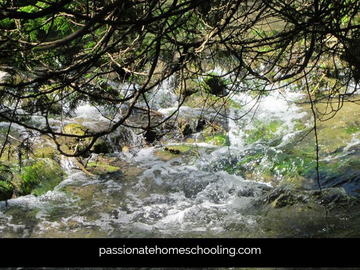 Waterfalls Nature Walk