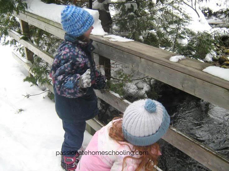 Winter Nature Walk