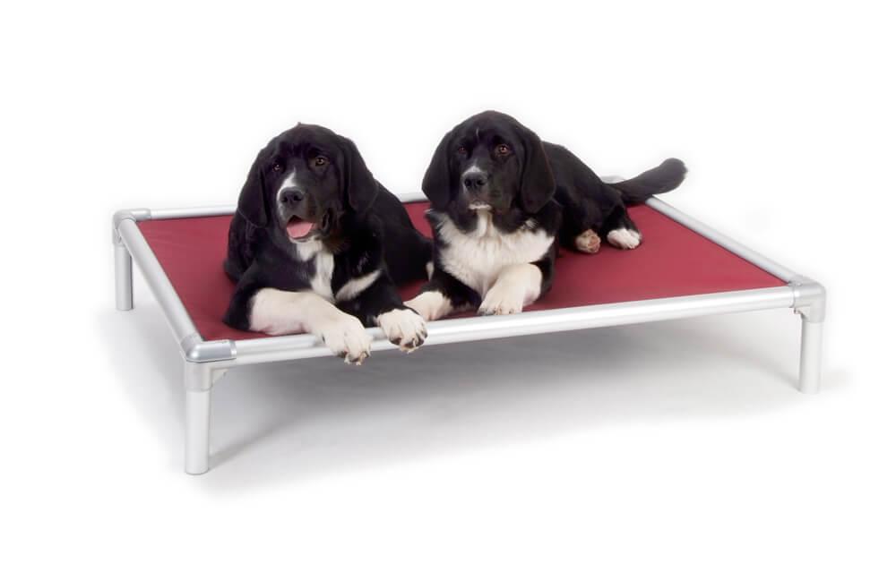 Kuranda Orthopedic Dog Bed