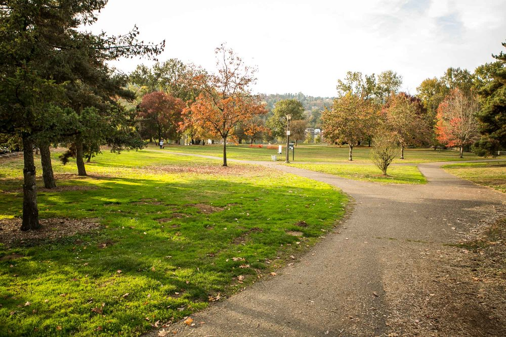 visit-sellwood-moreland-business-alliance_sellwood-riverfront-park-2.jpg