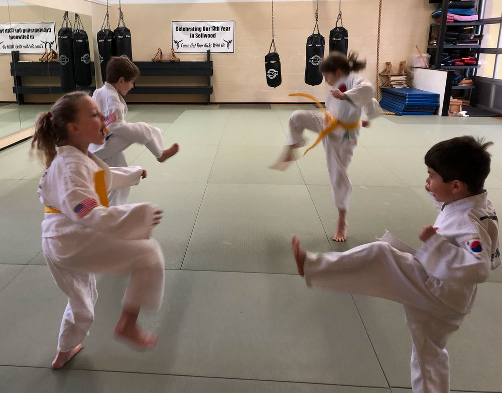 visit-sellwood-moreland-business-alliance_kims-taekwon-do-8.jpg