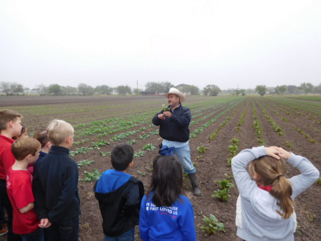 KIDS LEARNING ABOUT VEGETABLES 4.JPG