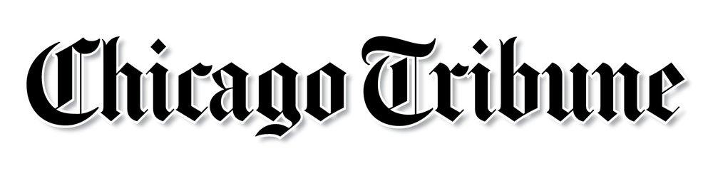 Chicago Tribune - Alan Artner, March 2008