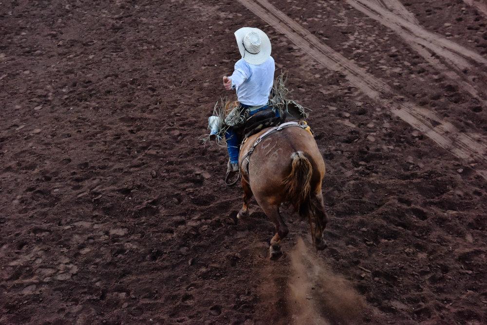 rodeo6.jpg