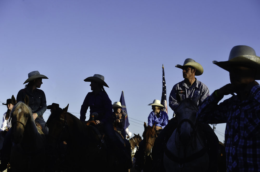 rodeo14.jpg
