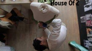 House-of-Z.jpg